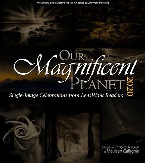 Our Magnificent Planet 2020 (a 312-page book)